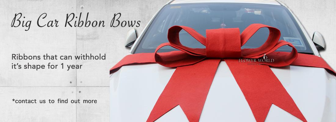 Big Car Bows